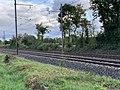 Ligne ferroviaire Mâcon Ambérieu Route Prales Perrex 9.jpg