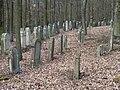 Limbach Judenfriedhof 3300449.jpg