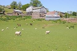 Llwyn celyn farmhouse decor