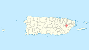 Location of Juncos in Puerto Rico
