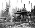 Logging crew and donkey engine, English Lumber Company camp no 5, ca 1917 (KINSEY 153).jpeg