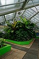 London - Kew Gardens - Princess of Wales Conservatory 1987- Ten Climatic Zones IX.jpg