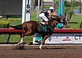 Los Alamitos Sept 2014 IMG 6811 edited-1 (15294768536).jpg
