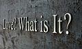 Love What is It.JPG