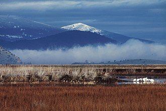 Lower Klamath National Wildlife Refuge - Image: Lower Klamath National Wildlife Refuge snow