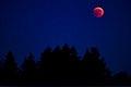 Lunar Eclipse 2018 SG 019 (28804398637).jpg