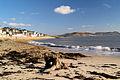 Lyme Regis Beach - geograph.org.uk - 484408.jpg