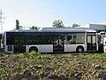 MAN Lion's City CNG - Bus de démonstration (Chignin * printemps 2019).jpg