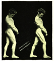 Macfadden's Fasting Hydropathy and Exercise p86.png