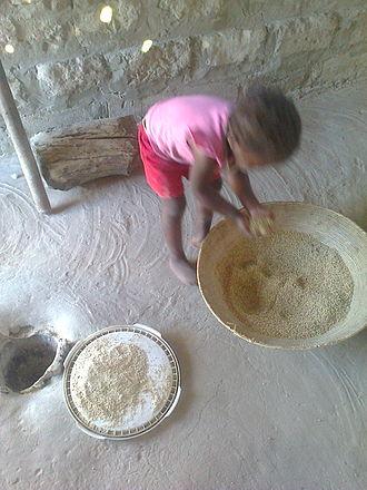 Pearl millet - Image: Mahangu pounding