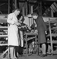 Making Shoes For the Wrens- the Manufacture of Footwear For the Women's Royal Naval Service at a Factory in the Midlands, England, UK, 1944 D23054.jpg