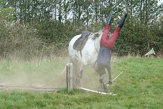 Falling as a part of recreational activities can cause spinal cord injuries. Man falling of horse.jpg
