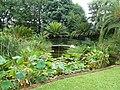 Manie van der Schijff Botaniese Tuin, d.jpg