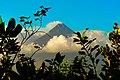Mayon Volcano - panoramio (6).jpg
