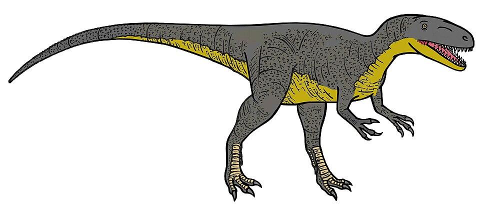 Megalosaurus 0289