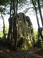 Menhir de Courtevrais - 09.JPG