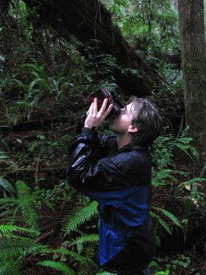 Michael Taylor (forester) - Michael Taylor in Redwood National Park taking a preliminary measurement with a laser rangefinder