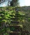 Mid Devon , Public Footpath Steps - geograph.org.uk - 1254569.jpg