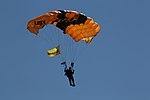 Military Parachute Teams' performance 141004-M-JD595-414.jpg