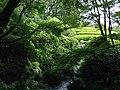 Momijiyama Garden in Sumpu Castle Park 10.JPG