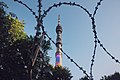 Moscow, barbed wire fence around the Ostankino Tower (21221254436).jpg