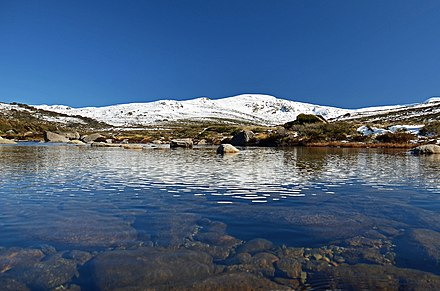 Headwaters of the Snowy River, with Mount Kosciuszko beyond Mount Kosciuszko from the Snowy River.jpg