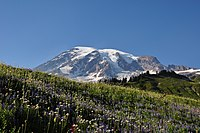Mount Rainier (Washington state, USA).jpg