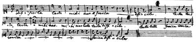 Il manoscritto autografo.