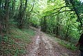 Muddy bridleway dropping down into the Darent valley. - geograph.org.uk - 940966.jpg