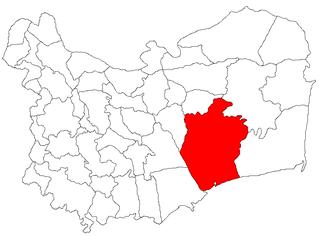 Murighiol Commune in Tulcea, Romania