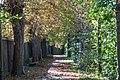 NDOÖ 456 Kastanienbaumallee Enns Oktober 2012.jpg