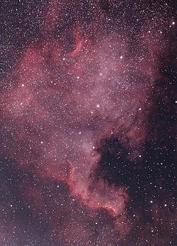 NGC 7000 photo.jpg