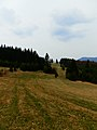 Nad Čičmanmi - po žltej značke - panoramio.jpg