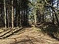 Nationaal Park Kennemerland (41370303891).jpg