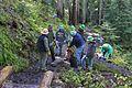 National Public Lands Day 2014 at Mount Rainier National Park (032), Narada.jpg
