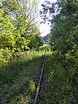 Nebenbahn Finnentrop-Wenholthausen (5777417727).jpg