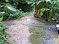 Ngã tư đường chùa thanh bình vũng liêm vĩnh long - panoramio.jpg