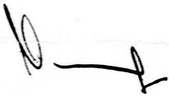 Mykola Azarov - Image: Nikolay Azarov signature
