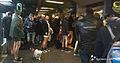 No Pants Subway Ride in Paris, 2014 (2).jpg