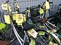 No Parking Bicycles in Japan.jpg