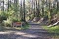 Noojee Rail Trail 003.JPG