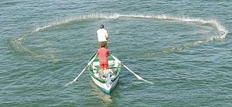 Cast net - The net as it falls into the water