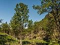 Norwegen Lebesby P1290397.jpg