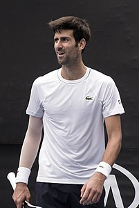 Novak Djokovic (Ser) (38823778745) (cropped).jpg