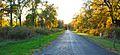 Oak Way, Duke Farms, Hillsborough.jpg