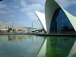 Concrete shell - Oceanografic, Valencia
