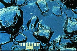 Pollution in the United States - Pollution from the Exxon Valdez oil spill.