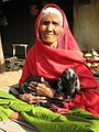 Old Indian woman.jpg