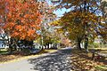Old Main Street, November 2008, Deerfield MA.jpg
