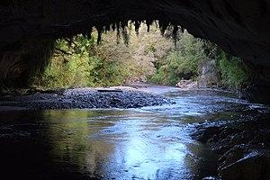 Oparara Basin Arches - Oparara River flowing out of Moria Gate Arch